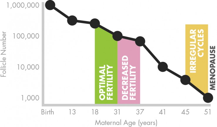 Lifestyle and Age Graph v2